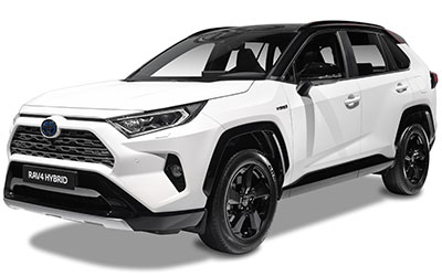 Toyota RAV4 2.5 Hybrid AWD Business Intro Automaat